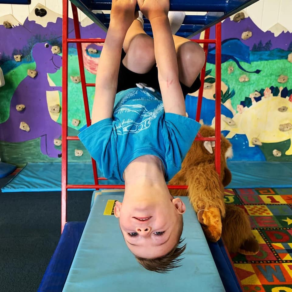 boy in blue shirt and brown hair hanging upside down